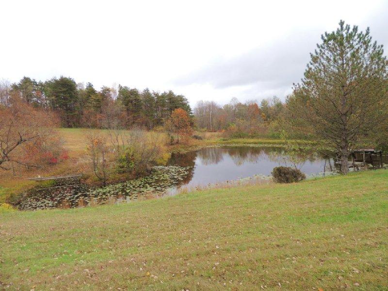 Murphy Remy Rd - 74 Acres : McArthur : Vinton County : Ohio