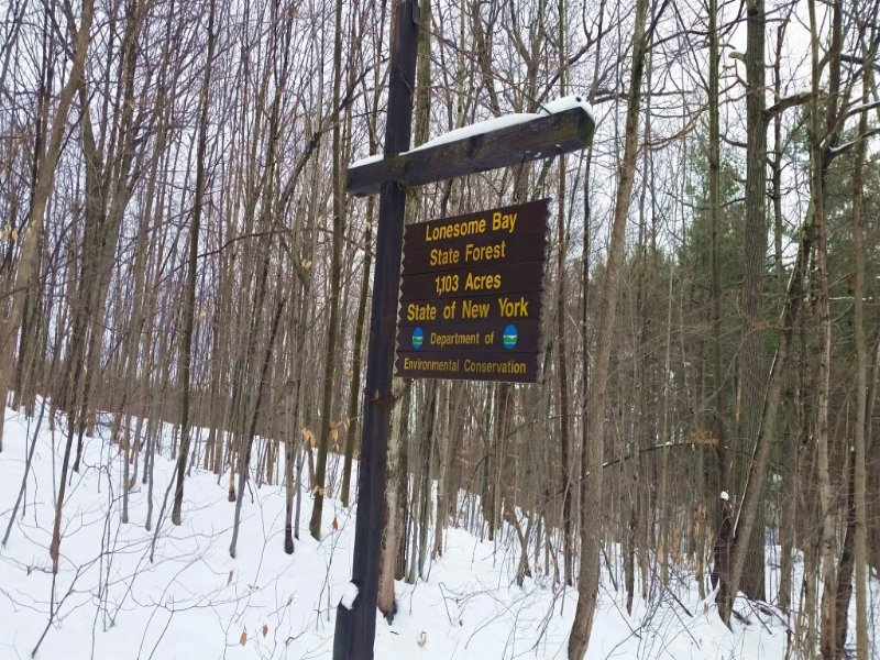 Land Borders State Forest 2 Sides : Hammond : Saint Lawrence County : New York