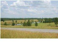 Great Minifarm Or Retirement Land