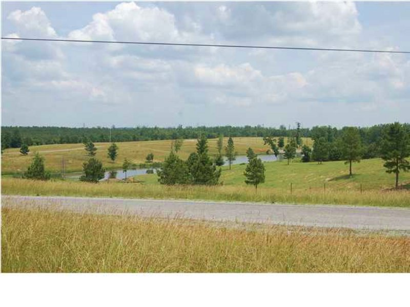 Great Minifarm Or Retirement Land : South Pittsburg : Marion County : Tennessee
