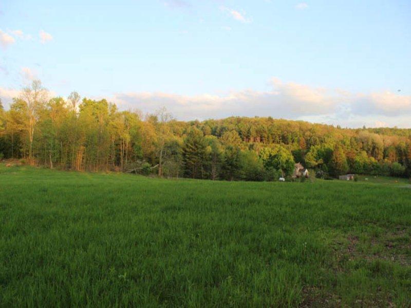 12+/- Acre Parcel Of Land In Benton : Benton : Columbia County : Pennsylvania