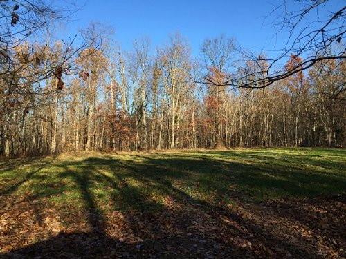 158+/- Acres Hunters Refuge : Tracy City : Marion County : Tennessee