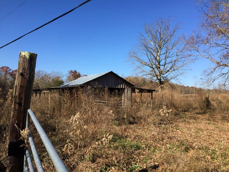 9+/- Acres Bring Your Livestock : Tracy City : Grundy County : Tennessee