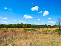 5 Acre Saddlebrook Ranch. Terms $20