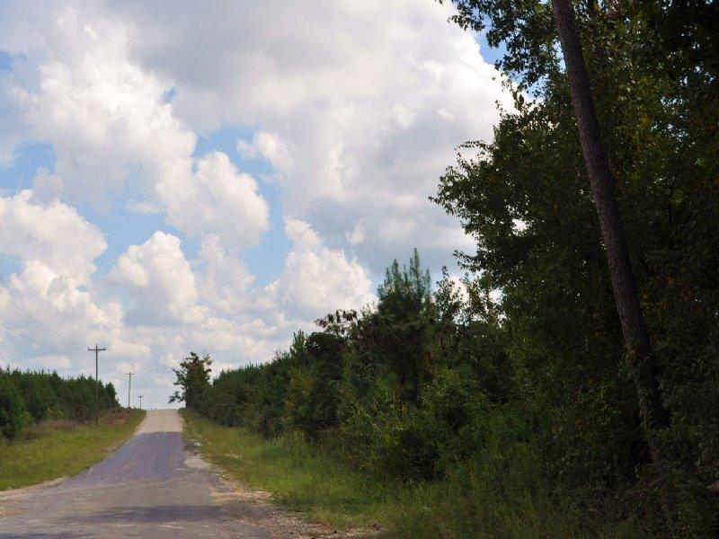145 Ac Upper Leggett Road : Livingston : Polk County : Texas