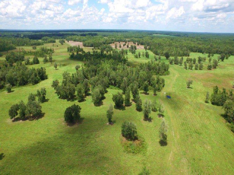 Rocky Creek Ranch : Greenville : Madison County : Florida