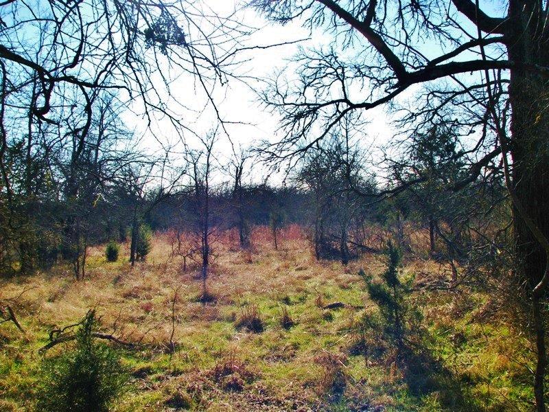 Hugo Lake Tract 2 : Hugo : Choctaw County : Oklahoma