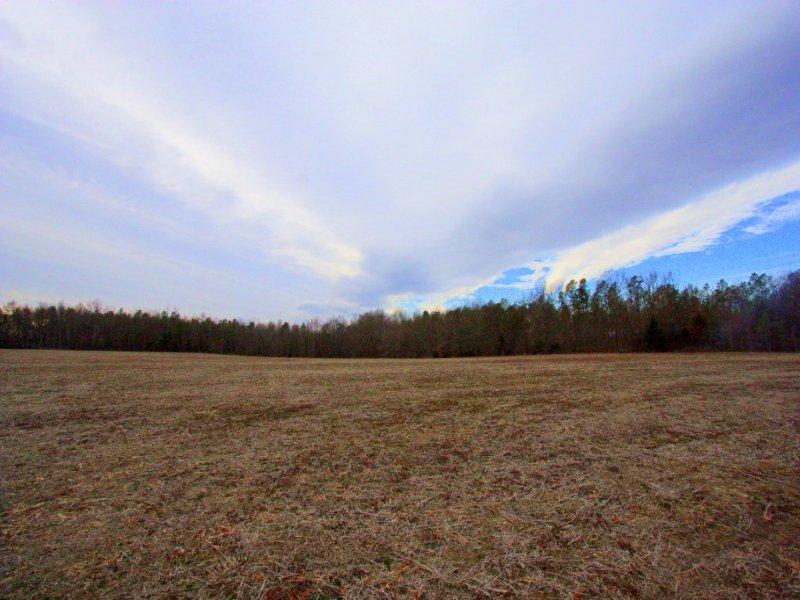 32.4 Perfect Hunting Acreage : Aylett : King William County : Virginia