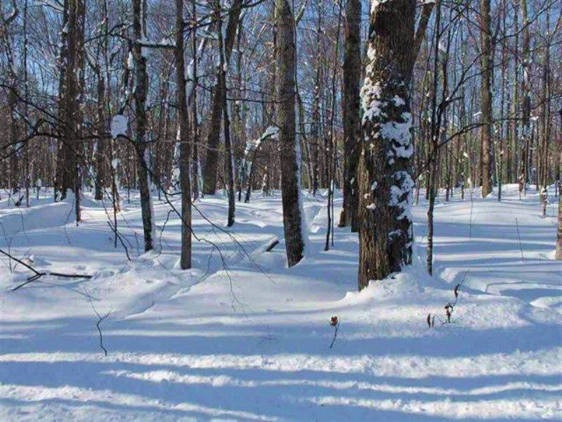 Tbd Smoky Lake Rd, Mls# 1084686 : Stambaugh : Iron County : Michigan