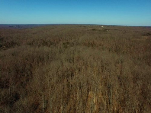 80 Acres County Rd 445 : Mokane : Callaway County : Missouri
