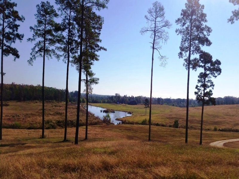 Dixsonville Road Ranch : Malvern : Hot Spring County : Arkansas