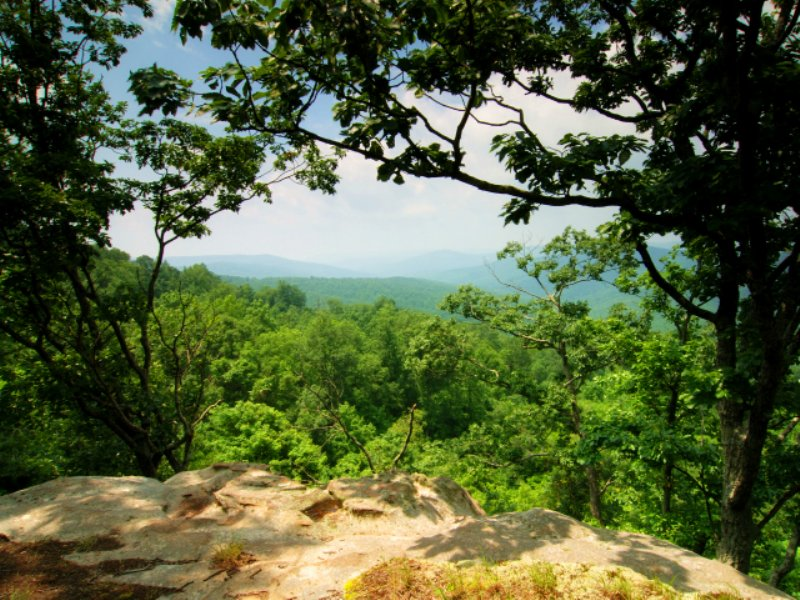 Winchester: Mountain Views & Creeks : Winchester : Franklin County : Tennessee