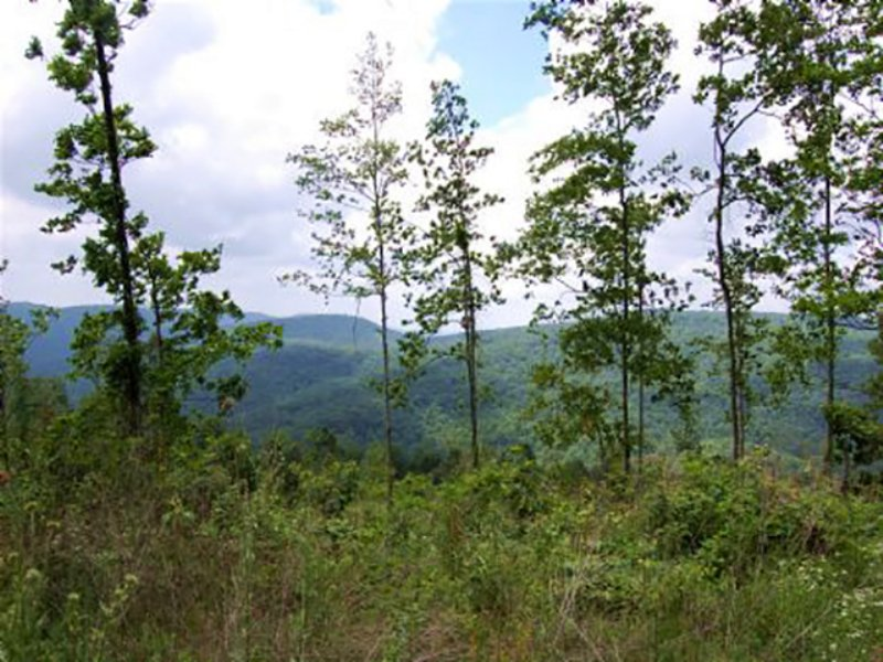 Winchester: Land Only $900/acre : Winchester : Franklin County : Tennessee