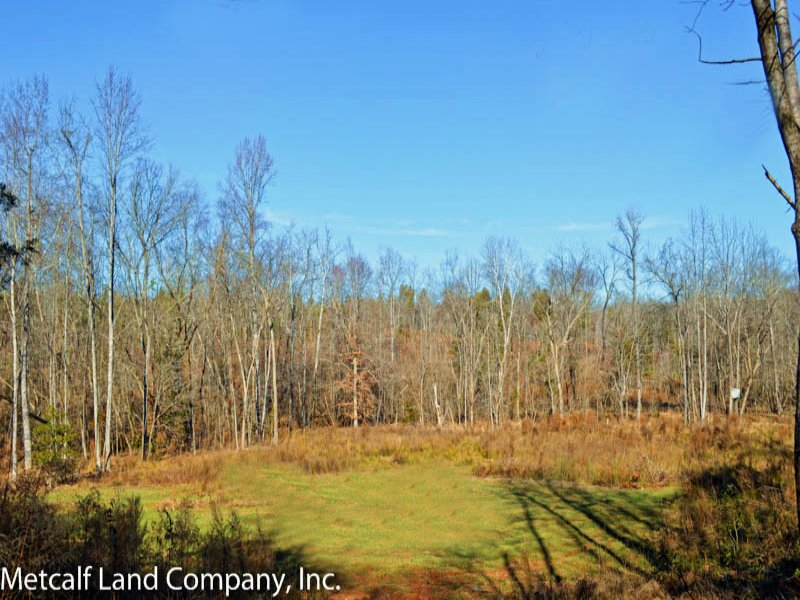 Great Little Hunting Tract : Woodruff : Spartanburg County : South Carolina
