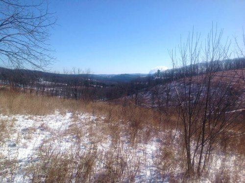 32+/- Acres Of Land For Sale : Benton : Columbia County : Pennsylvania