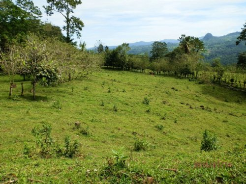 Mtn View 12.9 Ac Ranch W/ Springs : Santa Teresita De Turrialba : Costa Rica