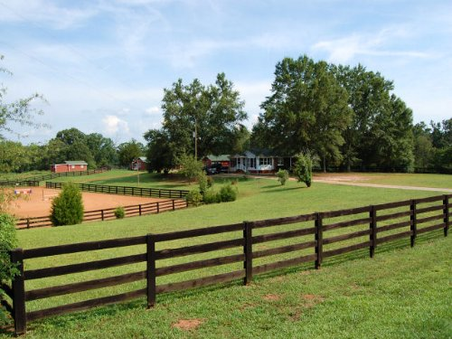 Horse Farm : Commerce : Banks County : Georgia