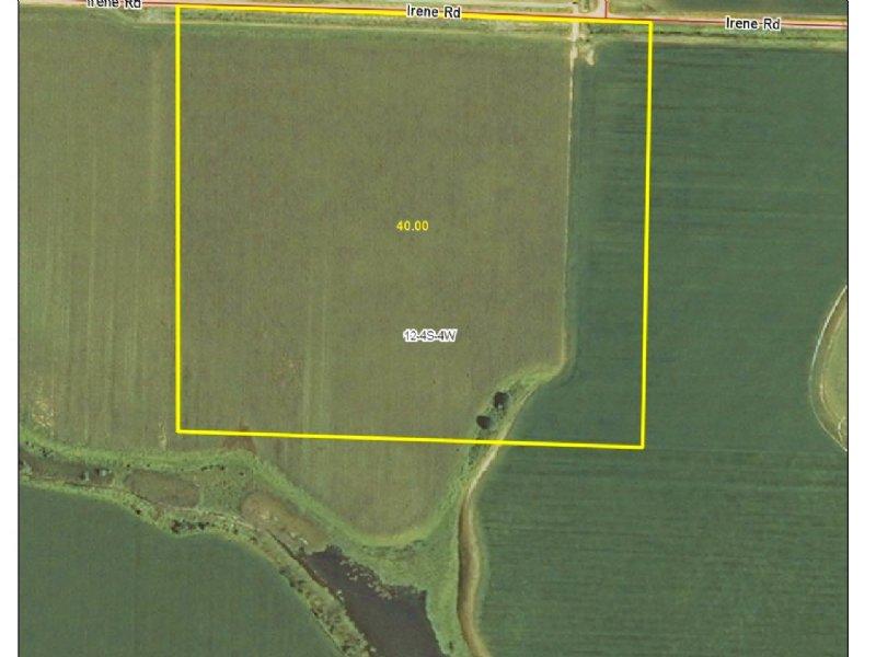 40+/- Acres Of Cropland For Sale : Almyra : Arkansas County : Arkansas