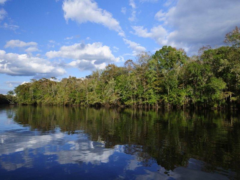 Baring Plantation : Ravenel : Charleston County : South Carolina