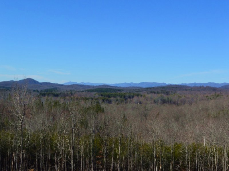 +/- 34 Acres With Long Range Views : Taylors : Greenville County : South Carolina