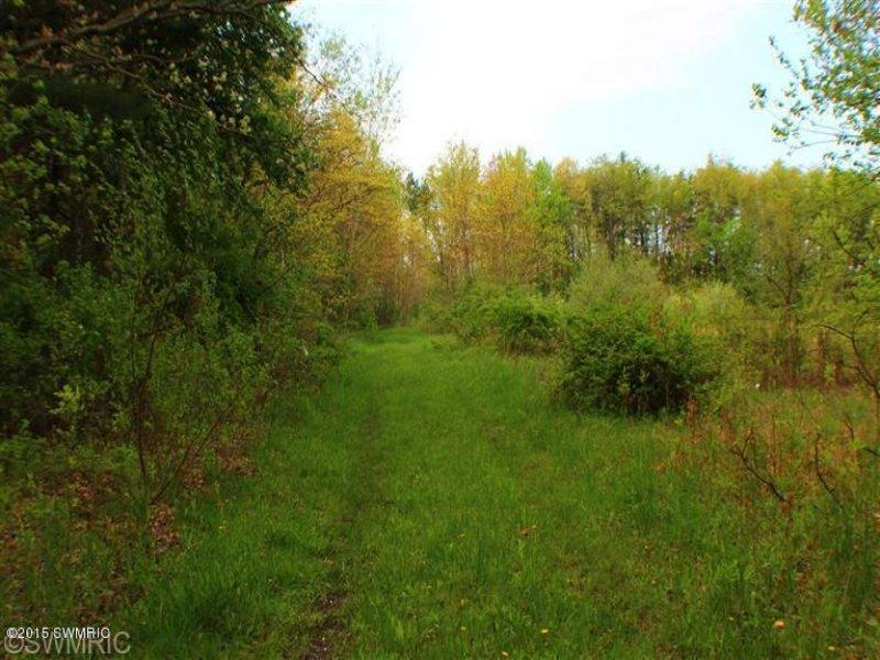 62.3 Acres On The Grand River : Nunica : Ottawa County : Michigan
