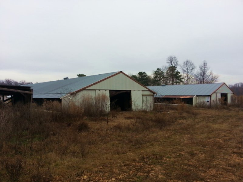 Four House Poultry Farm : Phil Campbell : Franklin County : Alabama