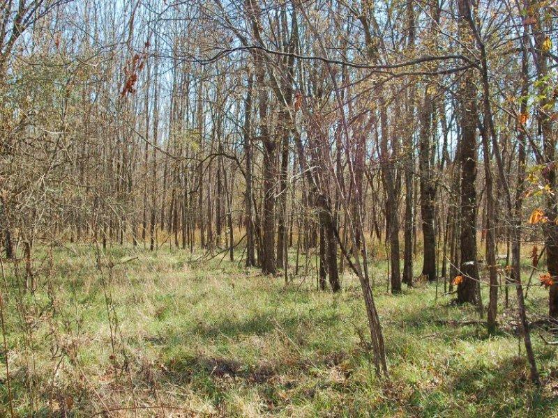 Come Build Your Dream Home : Fitzpatrick : Bullock County : Alabama