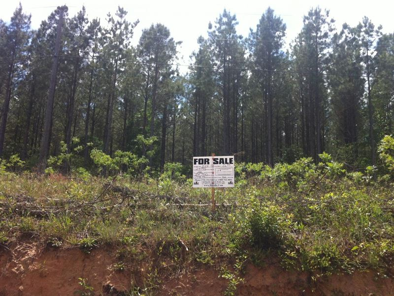 Greenfield Farms, 9.90 Acre Lot : Manchester : Coffee County : Tennessee