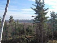 7630 County Rd 478, Mls# 1084811