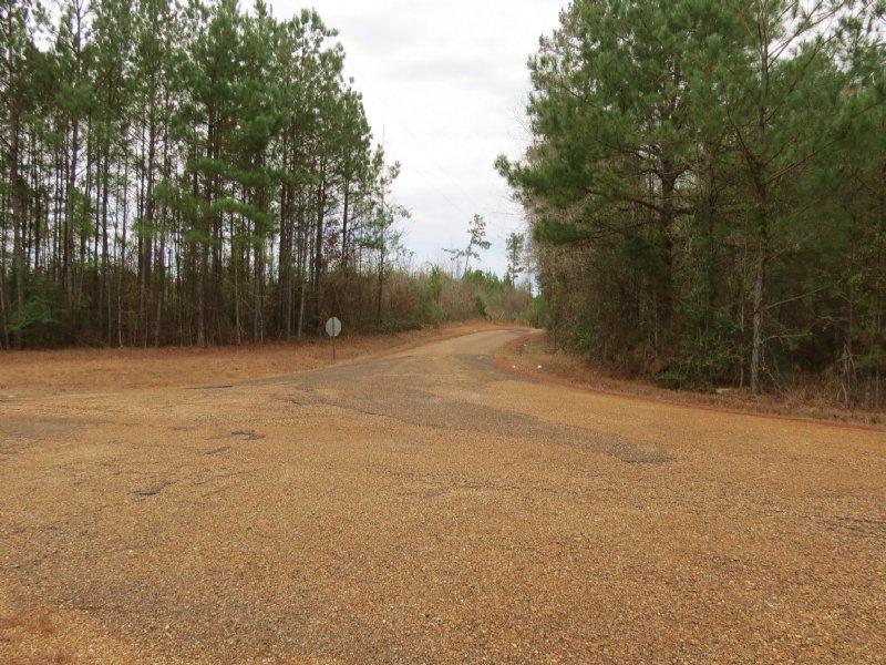 39 Acres In Wesson : Wesson : Copiah County : Mississippi