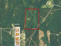 40 Acres Hunting Land, Recreation