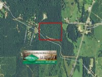 20 Acres Hunting Land, Recreation