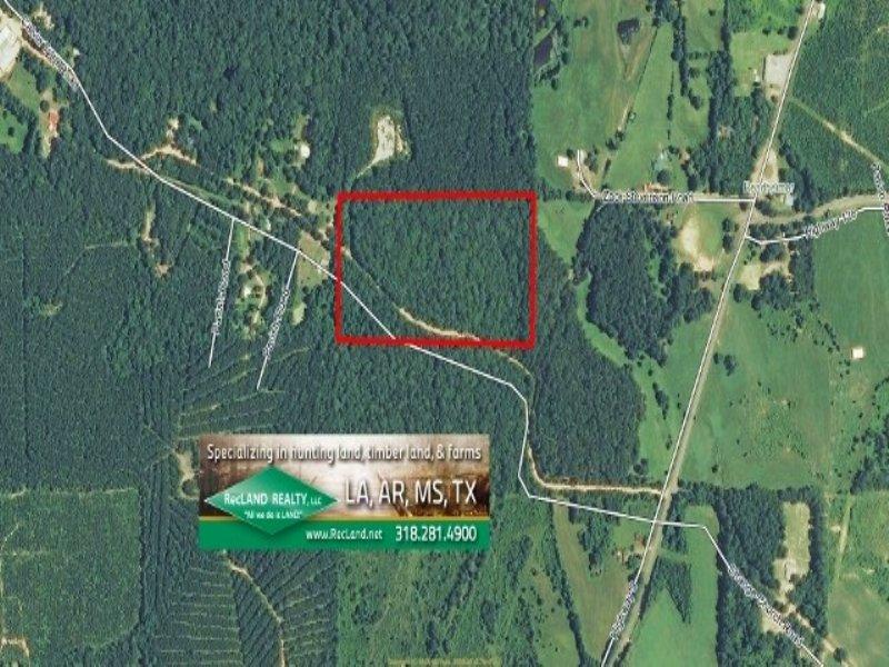 20 Acres Hunting Land, Recreation : Saline : Natchitoches Parish : Louisiana