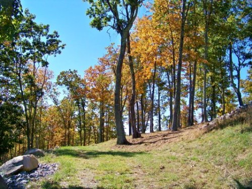 Acreage, View Close Trout Stream : Independence : Grayson County : Virginia