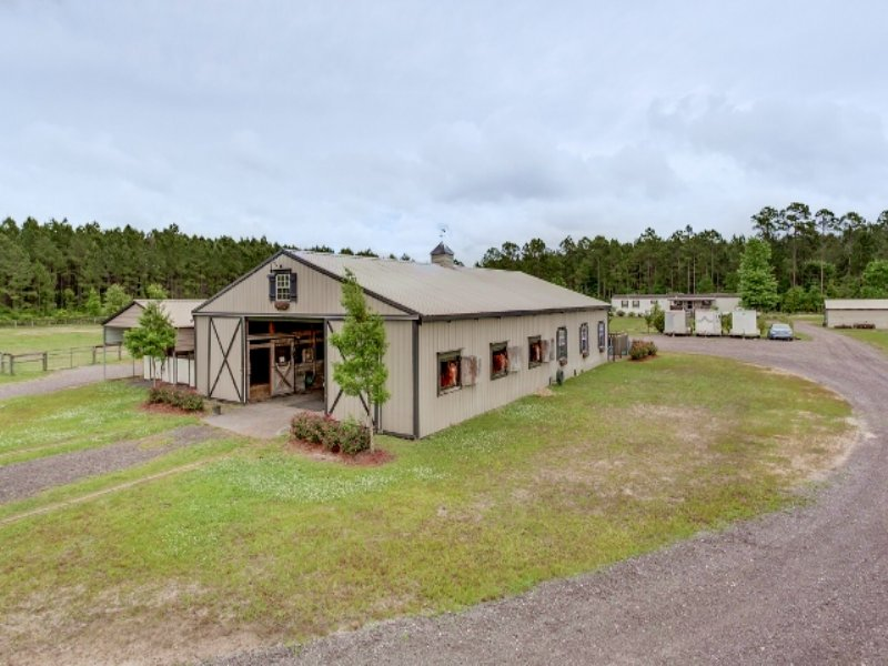 Beautiful Horse Farm, Callahan Fl : Callahan : Nassau County : Florida