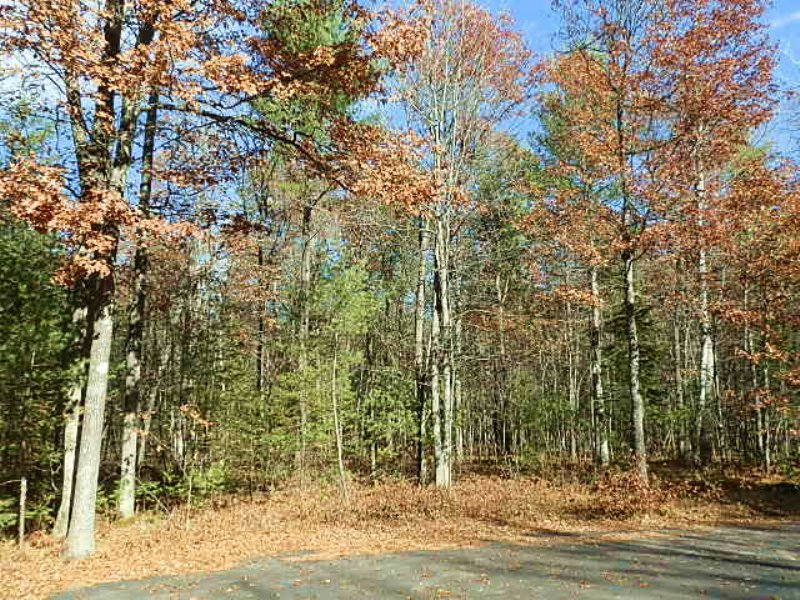 Pike Lake Chain Area Acreage : Fifield : Price County : Wisconsin