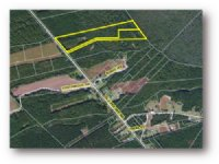 Sumter Mccray Tract
