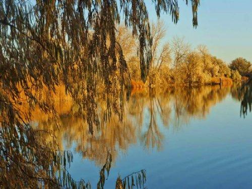 Packer Lake Farm : Torrington : Goshen County : Wyoming
