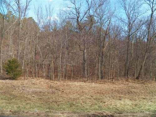 20 M/L Acres N. 520 Road : Tahlequah : Cherokee County : Oklahoma