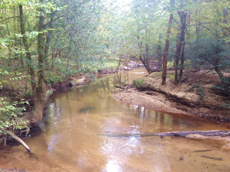 Griffin Mill Road Tract : Piedmont : Greenville County : South Carolina