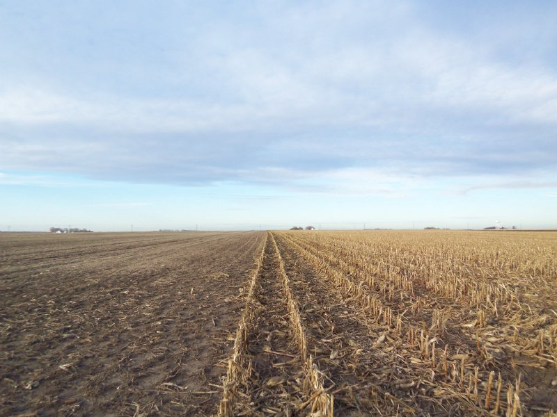 1120 Acres Productive Farmland : Humeston : Wayne County : Iowa