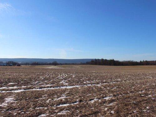42+/- Acre Farm For Sale : Milton : Northumberland County : Pennsylvania