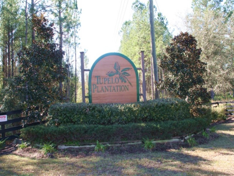 Tupelo Plantation- Barn Owl Dr : Callahan : Nassau County : Florida