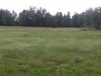 Huck Finn Farms - 6.14 Acre Lot : Batesburg : Aiken County : South Carolina