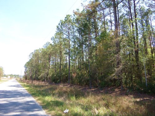93 Acres In The City Limits : Jesup : Wayne County : Georgia