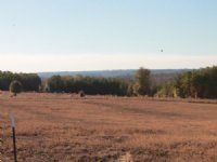 Reduced Price / Pasture & Hardwood