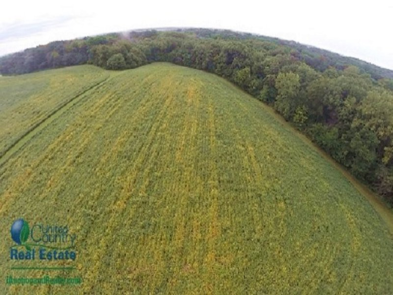 Peoria County Land I Auction : Mapleton : Peoria County : Illinois