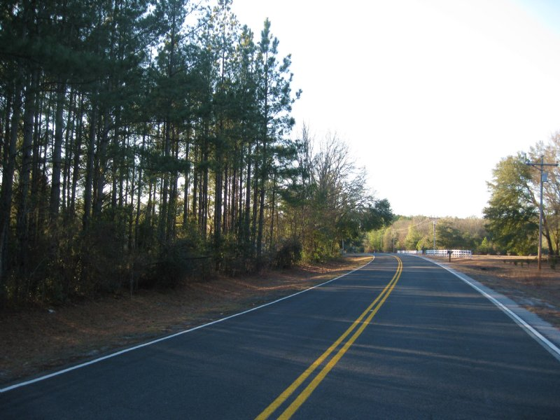Wire Road Tract : Grover : Dorchester County : South Carolina