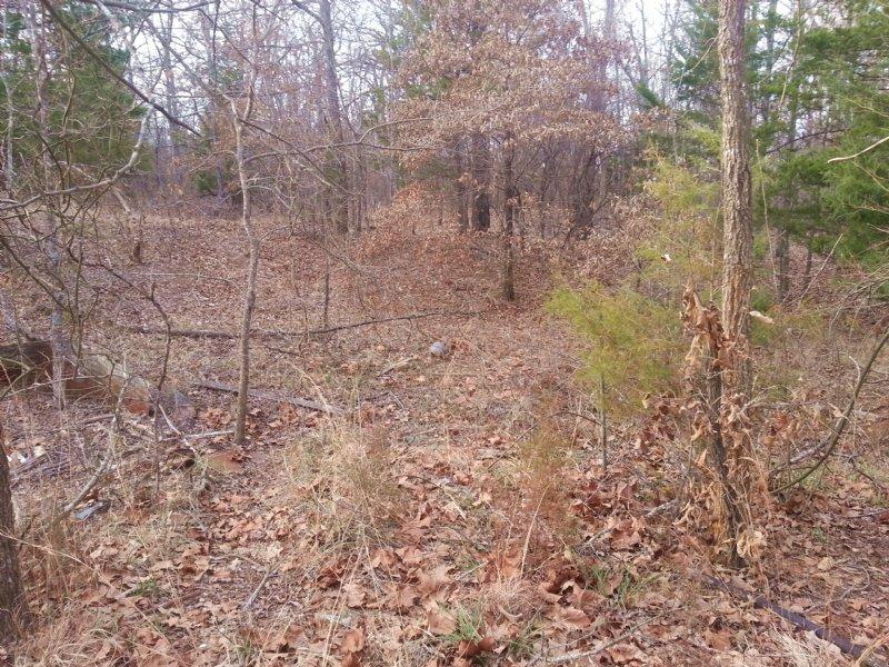 30 Recreational/hunting Acres : Powderly : Lamar County : Texas