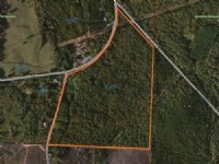 62+/- Acres Young's Mill Road